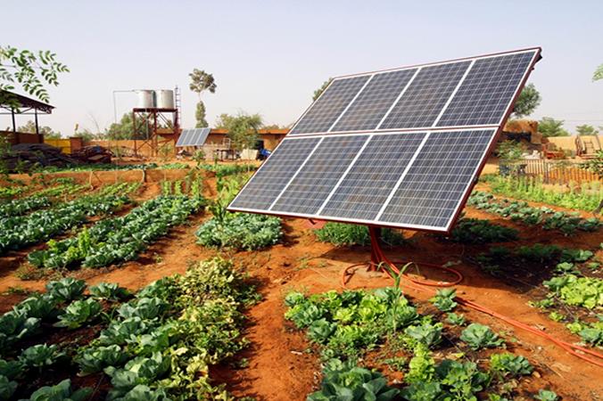 Energia solar reduz os custos de produção nas fazendas e estimula a irrigação